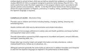 child care duties responsibilities resume job description for child care director resume template daycare
