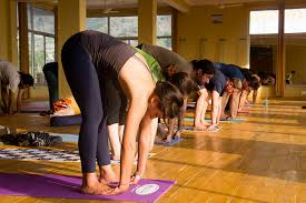 500 hour yoga teacher courses in india