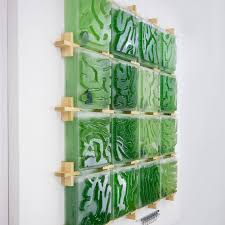 Algae Farm Design This Micro Algae Indoor Farm Shows The Promising Future Of