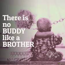 Funny Brother Quotes Classy Most Beautiful Quotes About Brothers And Sisters