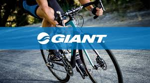 giant bicycles wellington home facebook