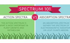 Action Spectrum Led Light Spectrum 101 Absorption Spectra Newsroom