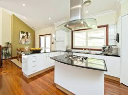 clear kitchen cabinet doors kitchen clear glass hanging lamp dark wood ceiling frame olive green wall