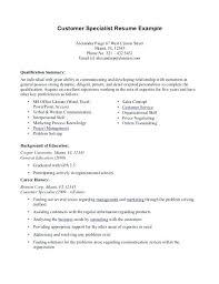 Professional Summary Resume Professional Summary Resume Examples