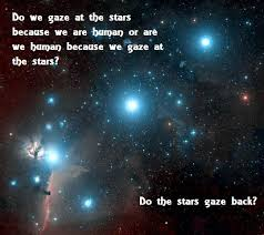 Stardust Quotes Magnificent From Stardust Movie Quotes On QuotesTopics