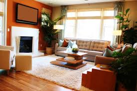 choosing an area rug for living room ideas