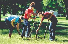 hundreds of central college volunteers to serve community central college has been recognized for proven community engagement and commitment to community service the