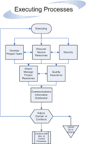 project management process guidelines flowchart   standard for    executing processes flow
