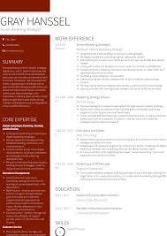 Digital Strategist Resume Marketing Strategist Resume Samples And Templates Visualcv