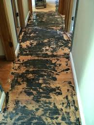 how to remove carpet glue from wooden floor how to get carpet glue off wood floor how to get tile adhesive off wood floors