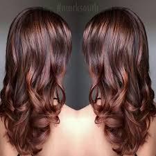 Cinnamon Hair Color Chart Beautiful Cinnamon Brown Hair Color Brown Hair Colors