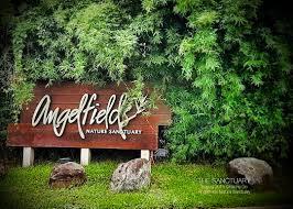 Angelfields Nature Sanctuary | Kaladkarin Diaries