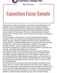 what is expository essay examples what is expository essay examples