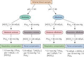 Respiratory Metabolic Acidosis Alkalosis Chart Acid Base Imbalance An Overview Sciencedirect Topics