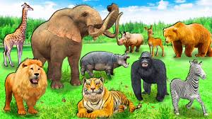 animals in zoo pictures. Delighful Animals Funny Baby Play With Zoo Animals In The Playground Nursery Rhymes U0026 Kids  Songs Inside In Pictures 2