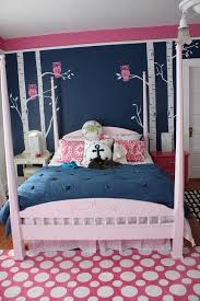 Dream rooms  pink and blueBedroom walls for Teenage ...