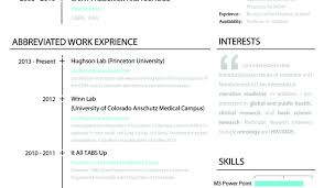 Sample Cv Template Latex Choice Image Certificate Design And