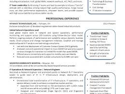 Download Sample Cio Resume Haadyaooverbayresort Com