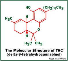marijuana active ingredient thc