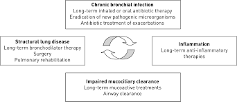 European Respiratory Society Guidelines For The Management