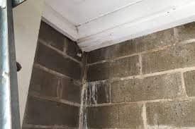 where you see rotting timbers and water stains on the wall there is evidence of a significant water leak in either the slab above or in some cases