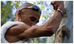 serious muscles bodyweight exercises