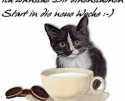 Guten Morgen Bilder Frs Handy Kostenlos Gutenmorgen T