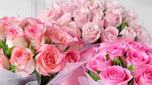 <b>Rose</b> Day 2020: Gifting Ideas For Loved Ones If <b>Bouquets</b> Are Not ...