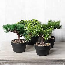 office bonsai. Modren Office Artificial Bonsai Tree  Indoor House  Office Plant Set Of 4 One Throughout U