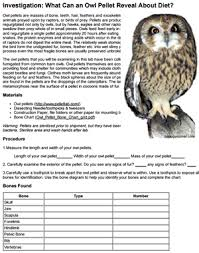 Owl Pellet Skeleton Reconstruction Chart Investigation Owl Pellets