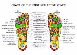 Reflexology Chart Foot Reflexology Chart Picture Of Happy Feet Massage Spa