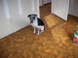 Painting Cement Floors 1000 Images About Painted Cement Floors On Pinterest Concrete