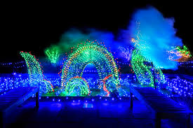 brookside gardens light display in wheaton in its 20th year