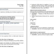 Technical Resume Format Excel Expert Sample Resume Create Mind Map