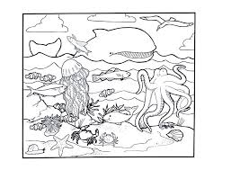 Small Picture Ocean Animal Coloring Pages Pictures 10815 Bestofcoloringcom