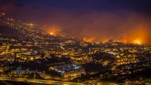 Resultado de imagem para os incêndios na madeira e continente