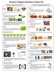 Fat Burning Food Chart Eric Berg 15 Printable Insulin Index Chart Dr Berg Printable Insulin