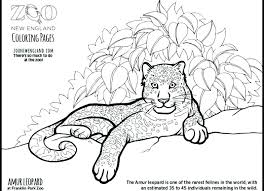Leopard Coloring Pages Leopard Coloring Pages Baby Snow Leopard