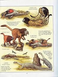 Resultado de imagen de ¿Cuál podría ser la especie dominante dentro de 50 millones de años