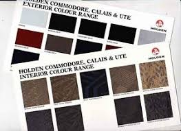 Vf Commodore Colours Chart Details About 1997 Holden Vt Commodore Calais Ute Exterior Interior Colour Chart