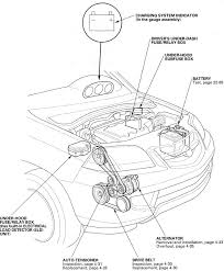 kawasaki bayou 300 wiring diagram images cargo box wiring diagrams pictures wiring diagrams