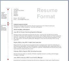 Resume Forms Online Form Of A Resume Blank Resume Forms Fill In The We 100 Resume Form 96