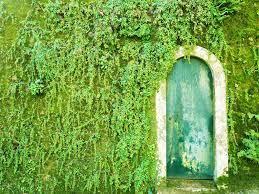 Bir rüyada kapıyı arayın. Kapının hayal ettiği bir gece görüşü ne var?