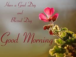 good morning hd wallpapers 65