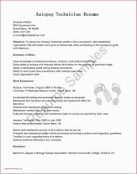 Sample Educator Resumes Sample Resume For Relief Teacher New Sample Resume For Relief