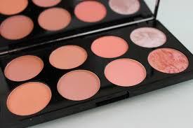 blush top picks image in picture makeup revolution ultra blush palette in hot e
