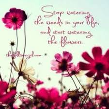 Beautiful Quotes About Life And Flowers Best Of Flower Quote Via Carol's Country Sunshine On Facebook Higdon