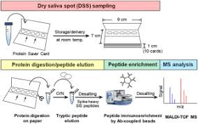 An Immuno Maldi Mass Spectrometry Assay For The Oral Cancer
