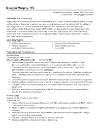 My Professional Resume Free Resume Example And Writing Download