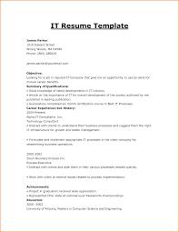 Sample It Resume Resume Templates